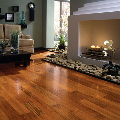 hardwood floor cleaning steambrite cleaning
