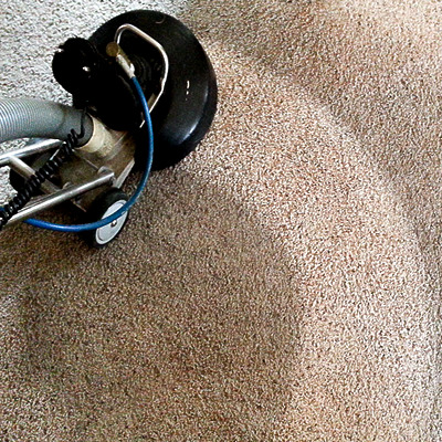 carpet cleaning by steambrite cleaning services