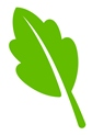Green Cleaning Solutions Icon