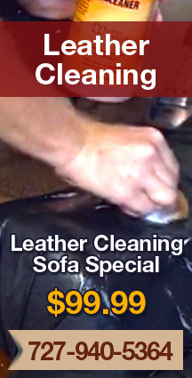Leather Cleaning Special
