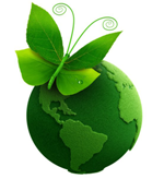 Steam Cleaning is Environmentally Healthy - Green Earth and Butterflly