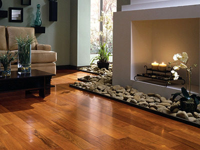 professional hardwood floor and carpet cleaning