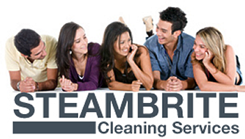 about steambrite cleaning services tampa bay florida